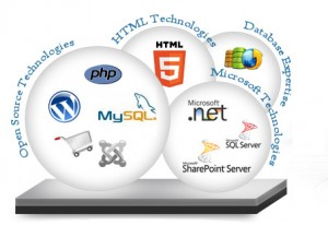 website develpment in Kanpur